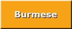 Burmese_tag